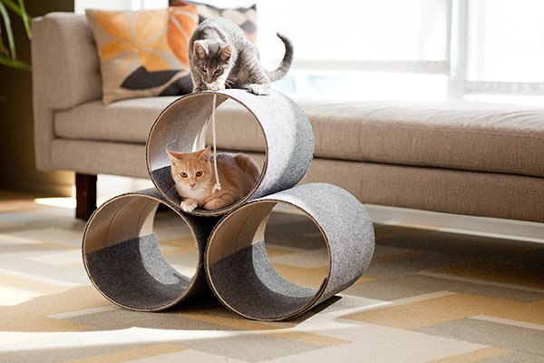 The cat 39 s meow minimal kitty diy cat play house for Easy diy cat furniture