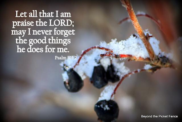 Sunday Verses Praise the Lord http://bec4-beyondthepicketfence.blogspot.com/2013/11/sunday-verses_17.htm