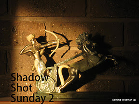 Shadow Shot Sunday2