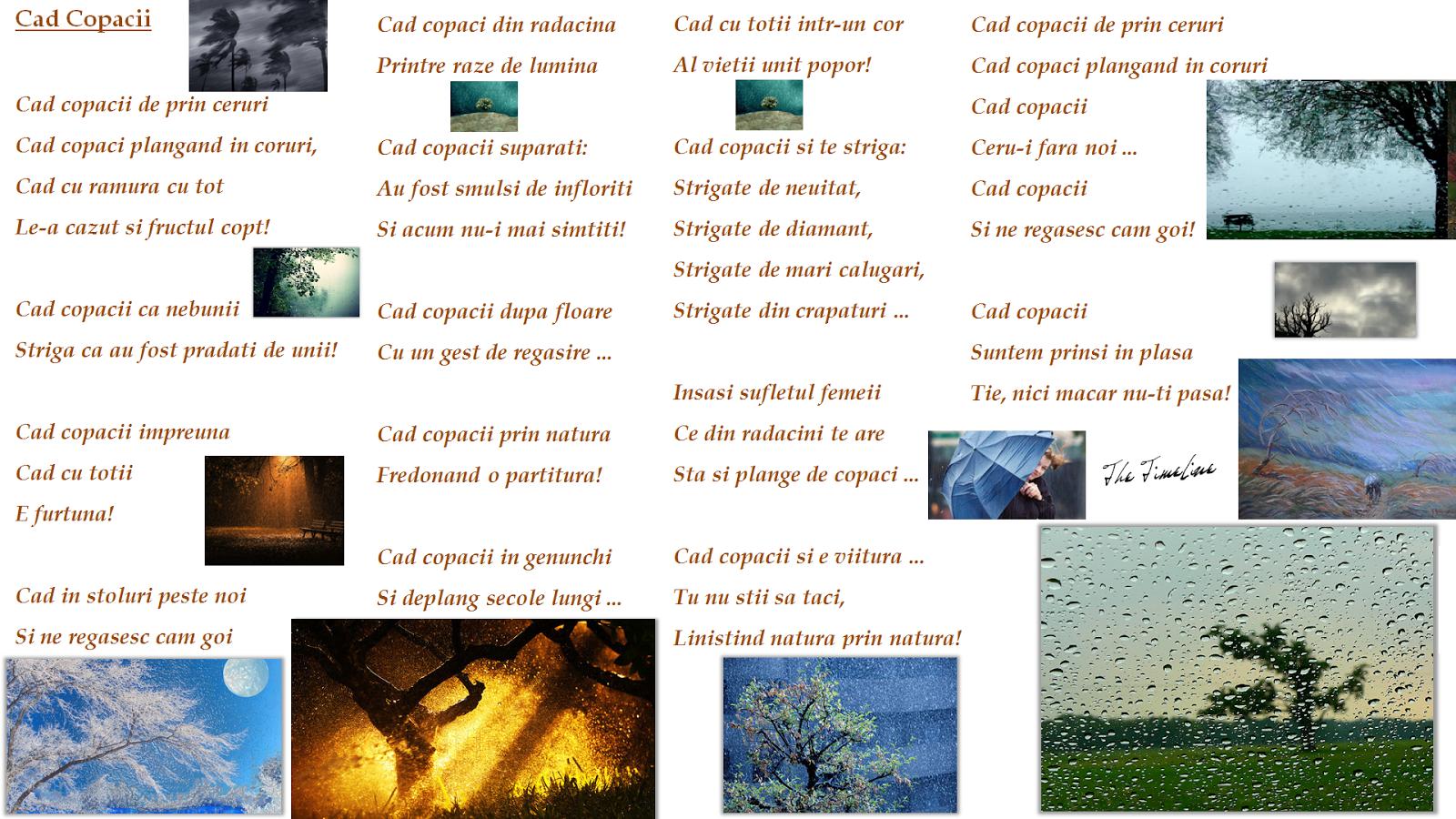 Cad Copacii poezie poetry filozofie existentiala umanitate lume simtire