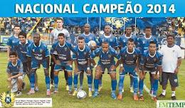 Campeão Amazonense