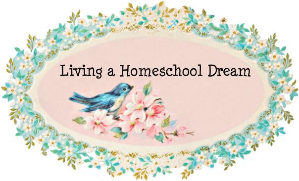 Living A Homeschool Dream
