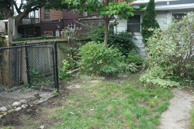 The Junction backyard garden cleanup after by Paul Jung Gardening Services Toronto