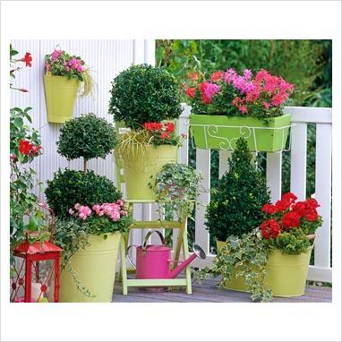 Azul vital decoraci n de jardines peque os for Ideas para jardines chicos