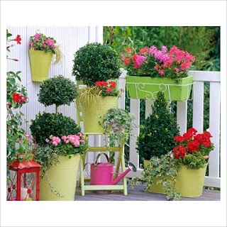 Azul vital decoraci n de jardines peque os for Decoracion de espacios pequenos con plantas