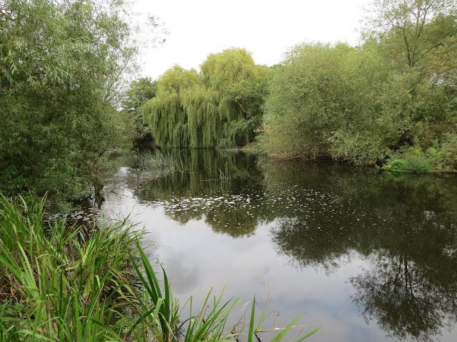 soar loughborough river angling