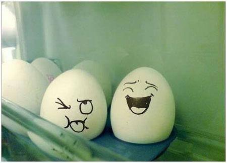 Andai Telur Punya Perasaan