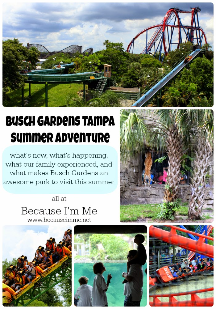 Because I'm Me Busch Gardens summer family adventure, find out what's new, what's happening, and how to save a little cash, #sponsored