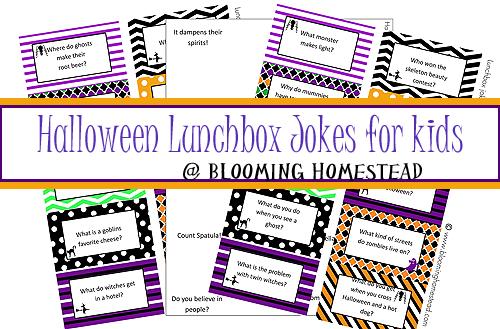 lunchbox jokes for kids halloween edition - Kids Jokes Halloween