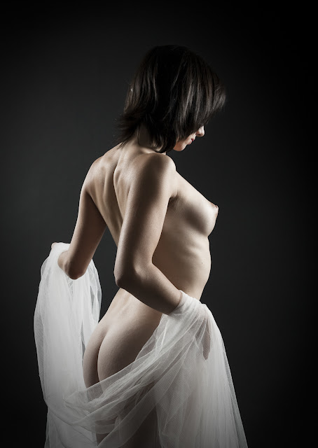 Desnudos Art Sticos