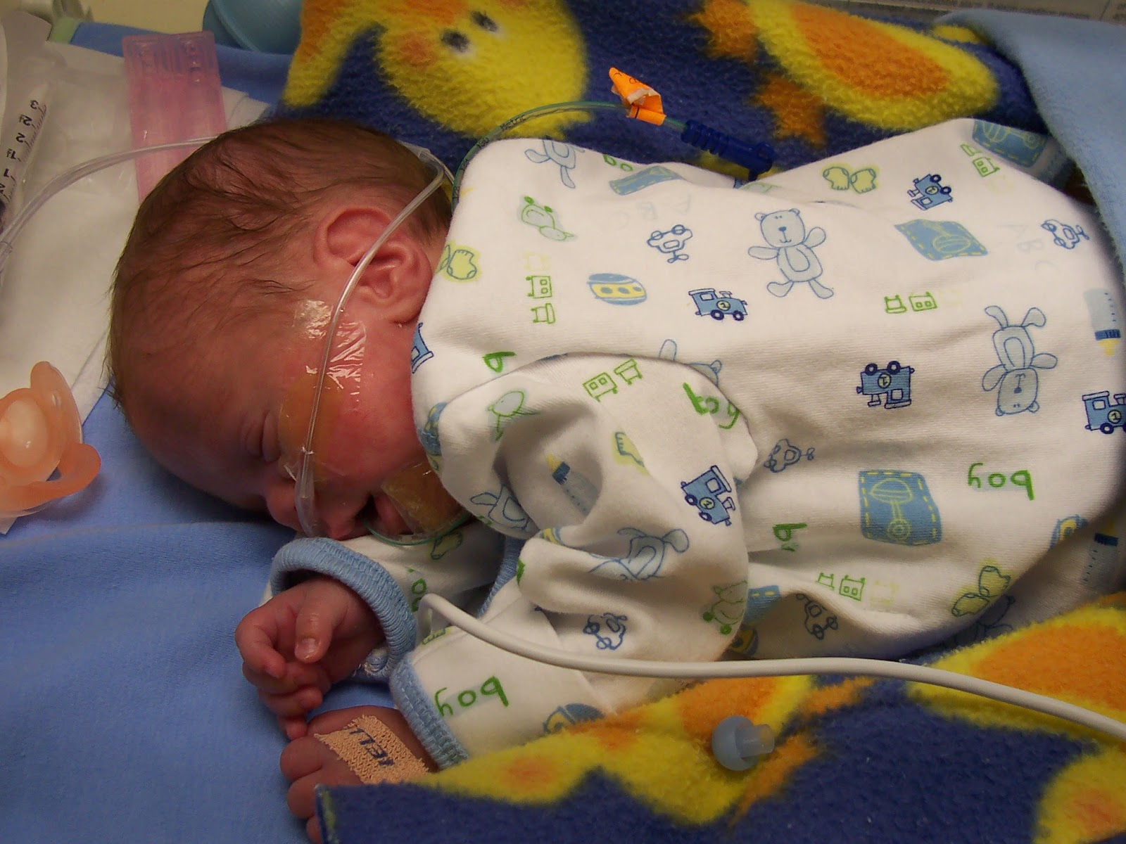 Nicumama Blog A Moms Guide To The Nicu And Preemie Experience Prolacta Dha For Mother Breast Milk Provides Important Energy That Infants Need Along With Ara Fatty Acids Aid In Development Of