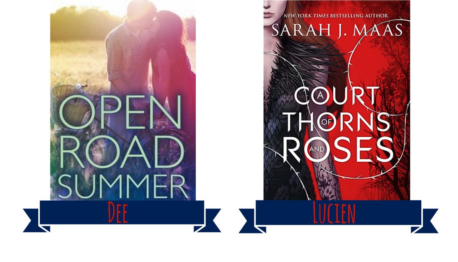 Open Road Summer + A Court of Thorns and Roses book covers