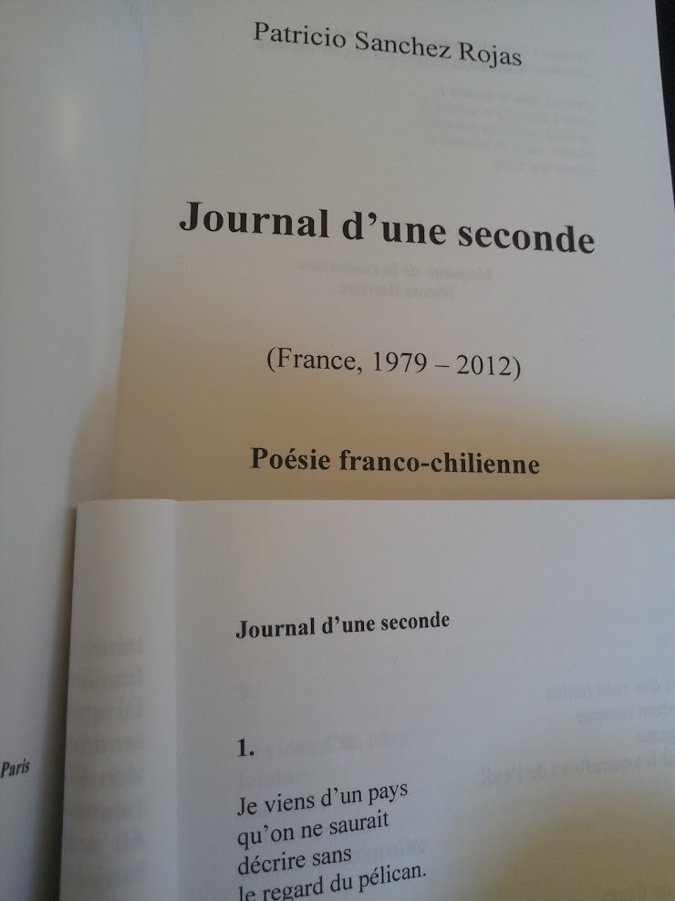 Journal d'une seconde - Patricio Sanchez Rojas - France 2015