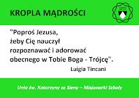 Kropla Mądrości - myśli Luigii Tincani