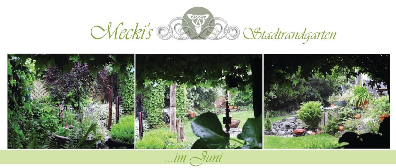 Mecki's Stadtrandgarten