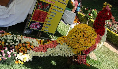 2011 Ooty Flower Show Photos