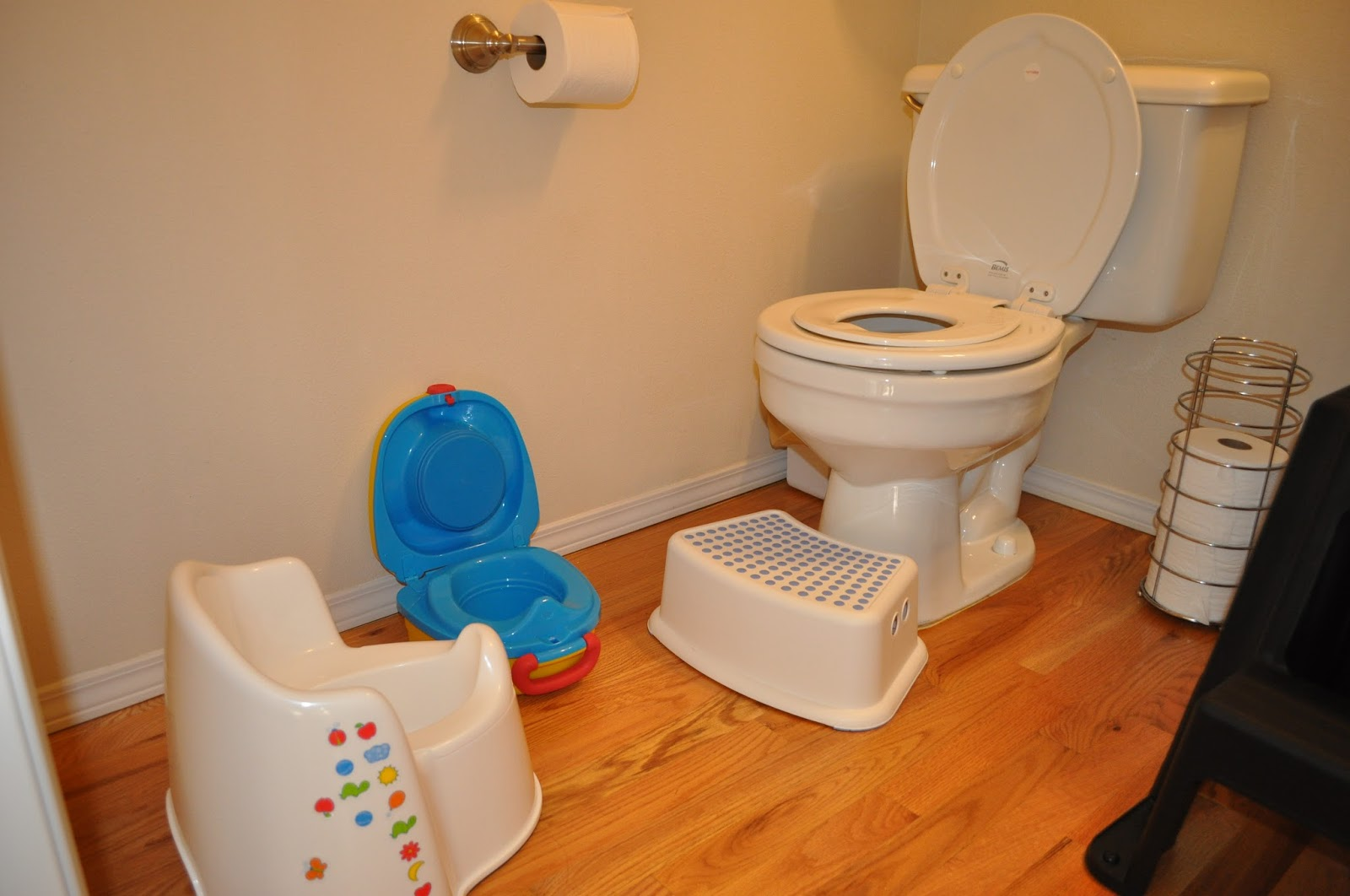 now the pooping on the potty is a whole other story but hopefully we ...