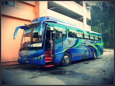 Foto Bus Pariwisata Malaysia Grassland