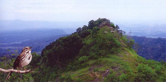 gunung gambar