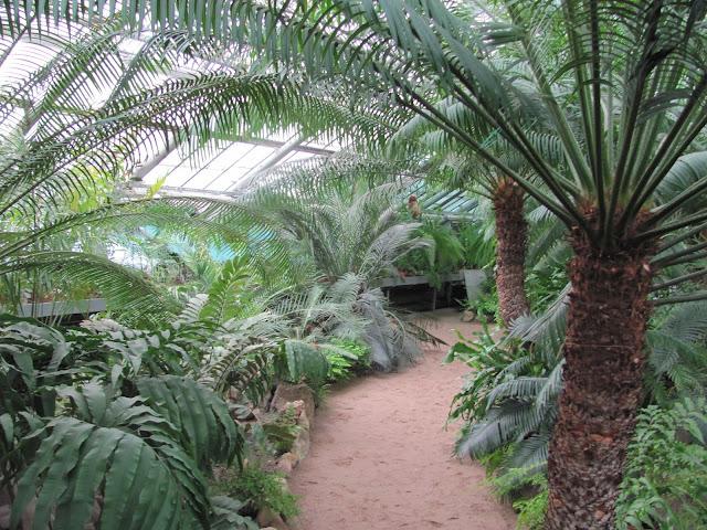 Ботанический сад Санкт Петербург фото