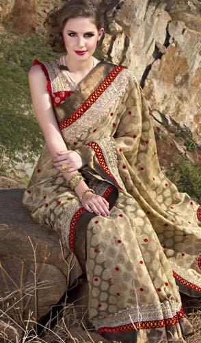 Indian Sarees Collection 2013