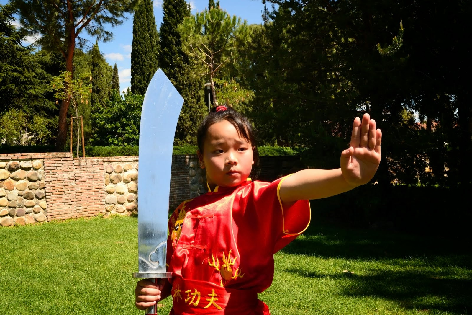 Escuela Wushu Madrid - Master Senna