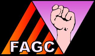ENTREVISTA A FAGC