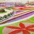 Ο κήπος των θαυμάτων στο Ντουμπάι (φώτο)