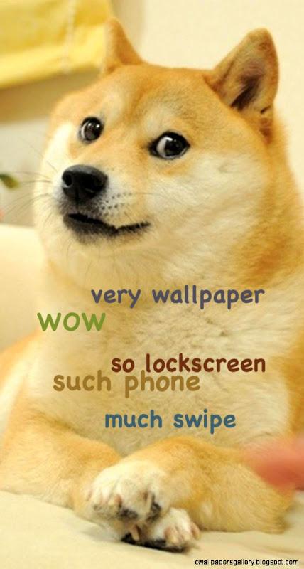 doge shibe wallpaper - photo #6
