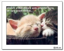 Uneori, o îmbrăţişare este singurul de care avem nevoie...