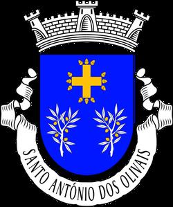 Junta de Freguesia de Santo António dos Olivais