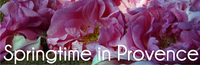 Springtime in Provence - Luxury Small Group Guided Tour
