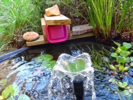 Mi vida acuatica bricolaje comedero autom tico para estanque for Comedero automatico para peces