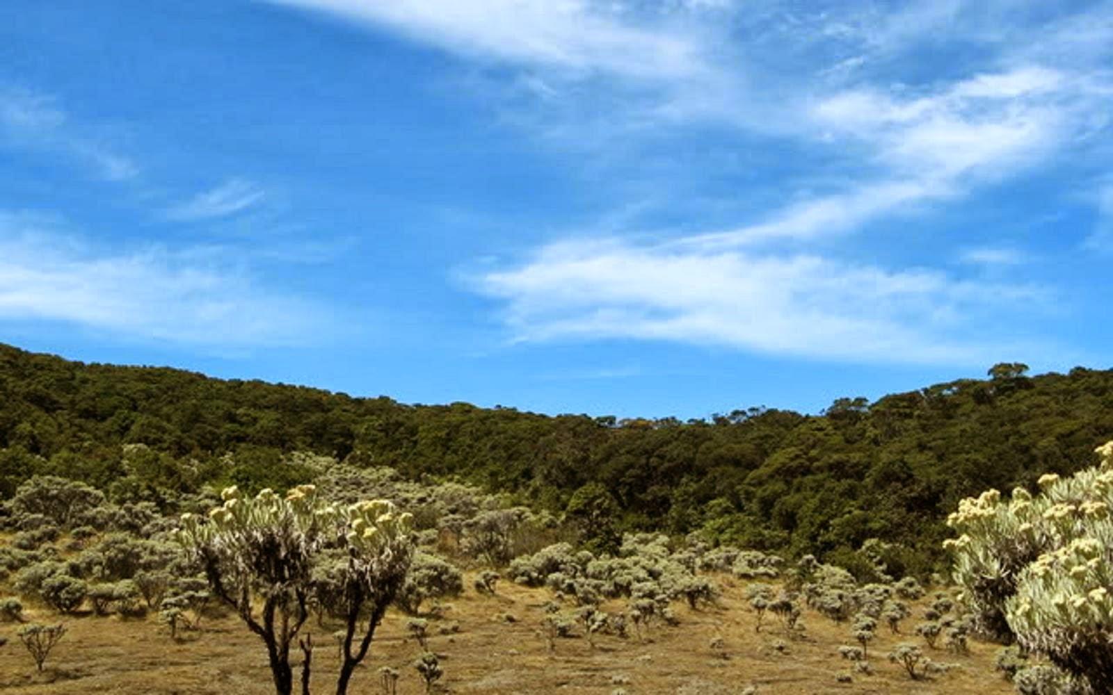 Lembah MandalaWangi yang kurindukan