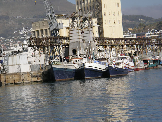 Harbor, Capetown, South Africa