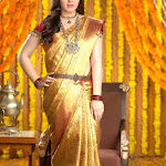 Hansika Chennai Silks Shoot in Silk Saree Pics