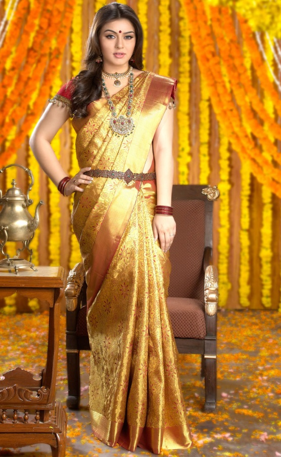 hansika chennai silks shoot saree