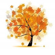 El otoño es bonito arbol de arce caida de las hojas de otono