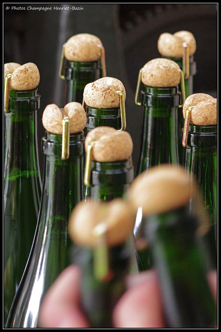 capsule de champagne Henriet Bazin n° 5