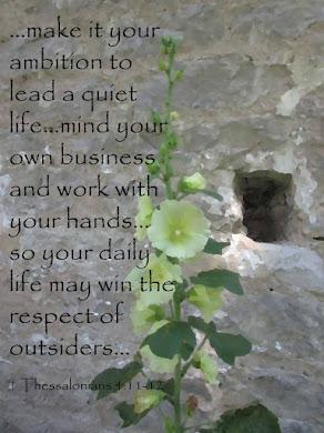 Lead a Quiet Life