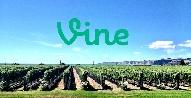 Vine - Travelling In New Zealand