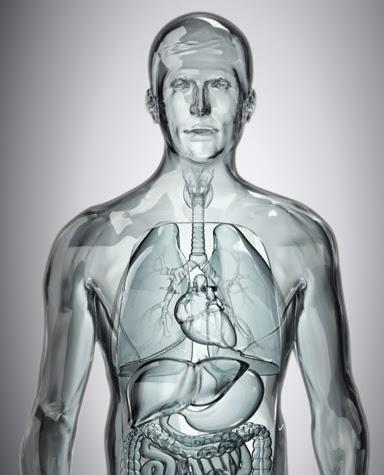 Imagen extraída de: http://www.rinconpsicologia.com