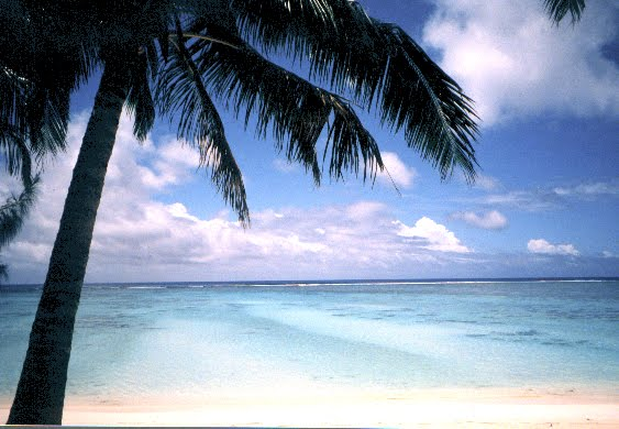Rarotonga by Tina Winterlik 2000