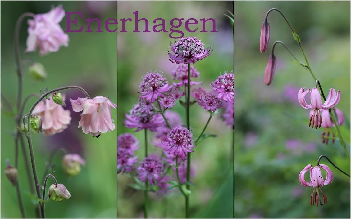 Enerhagen