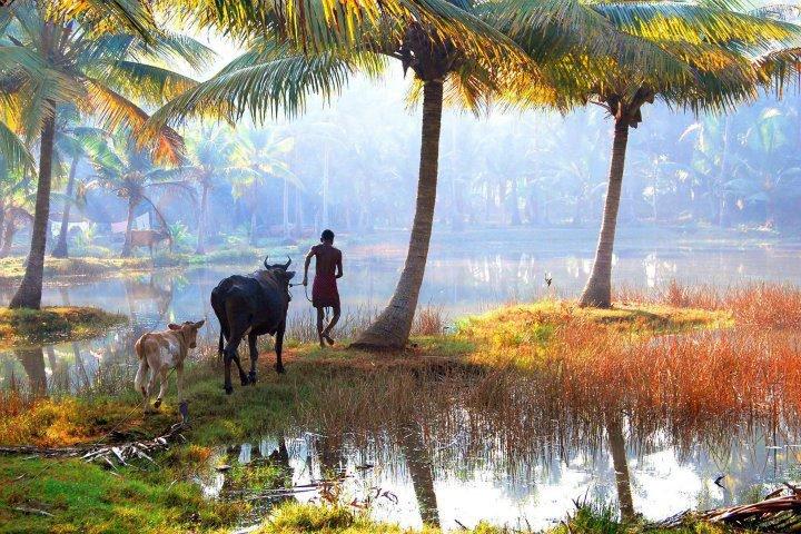Kerala Nostalgic Wallpapers Beautiful Place of Ban...