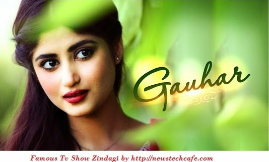 ' Gauhar ' Famous Zindagi Tv Show 2015 | Story | Cast and Timing | Reviews
