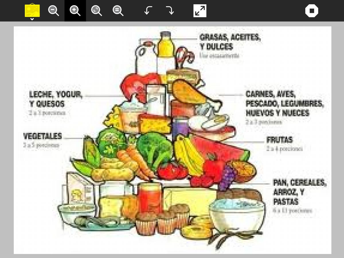 NutriSalud..: Que son los alimentos ?
