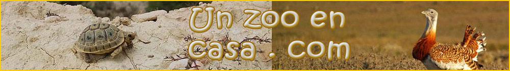Un zoo en casa