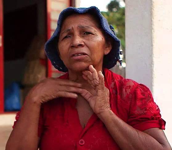 Buah Babassu dapat menyelamatkan Hutan di Brasil