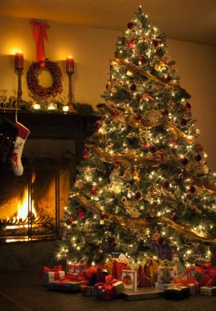 dont let your christmas tree go up in flames - When Does The Christmas Tree Go Up